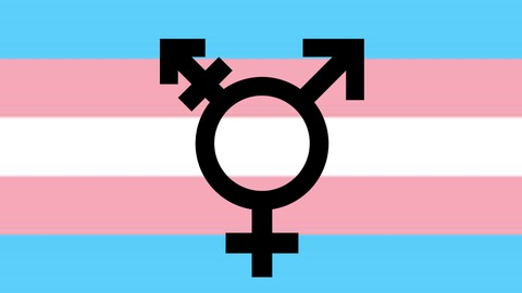 A Beginner's Guide to Trans 101