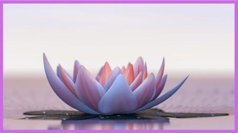 Physical & Spiritual Transformation in 10 days