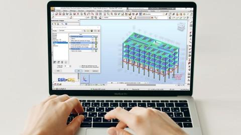 Robot Structural Analysis pour débutant