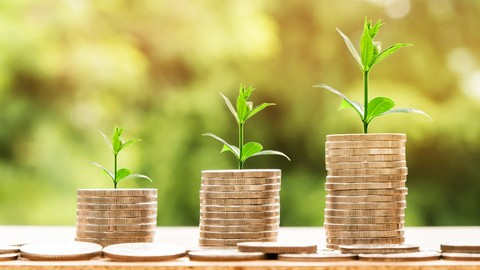 Personal Finance Crash Course: Maximize Your Income