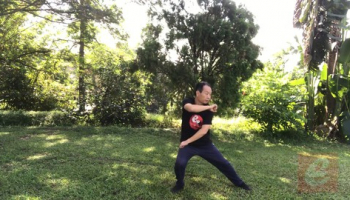 Sparring Tai Chi-Chen New Frame Routine 2 for Fitness